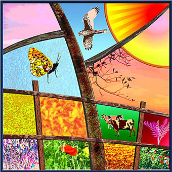 Stained Glass Window Designs